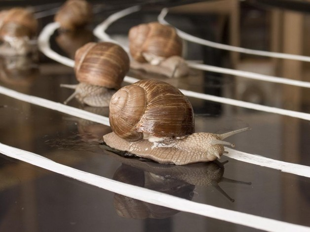 UK shale gas snails pace could be good at www.oesg.org.uk